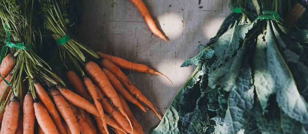 Harvest Mood: Enjoy the Taste of Fall's Bounty